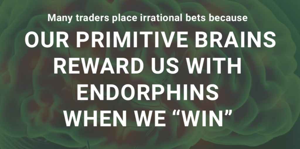 "Image reading ""Many traders place irrational bets because our primitive brains reward us with endorphins when we win""."